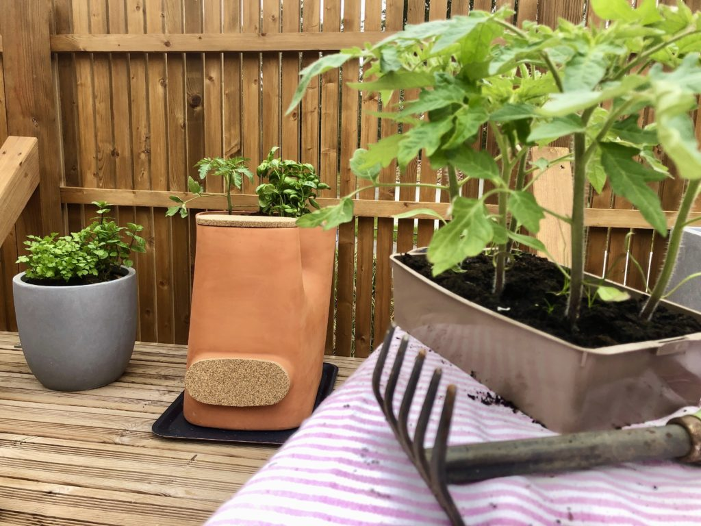 Pot de fleurs composteur sur une terrasse avec des éléments de jardinage, herbes aromatiques et plan de tomate